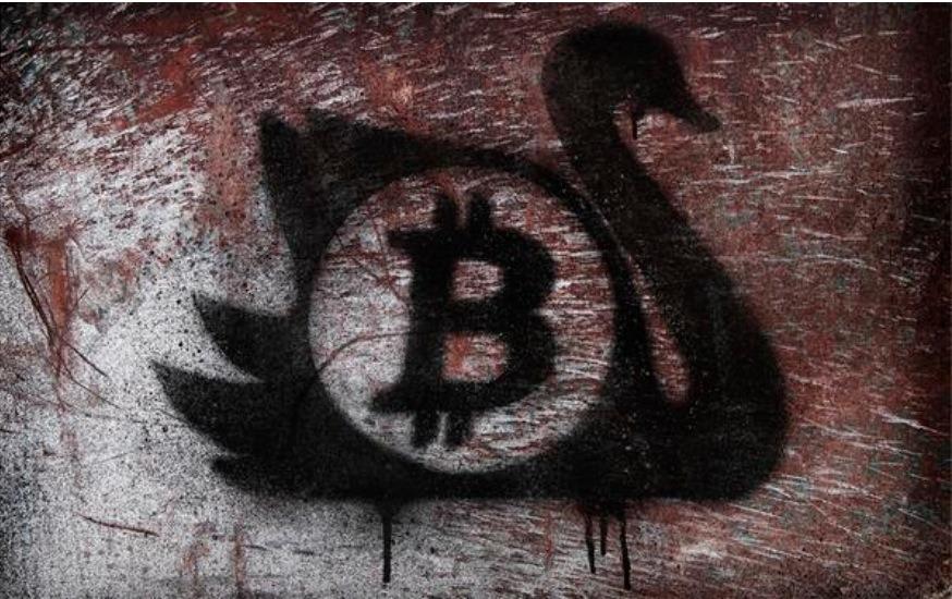 black swan bitcoin