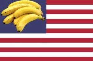 I Pledge Allegiance…